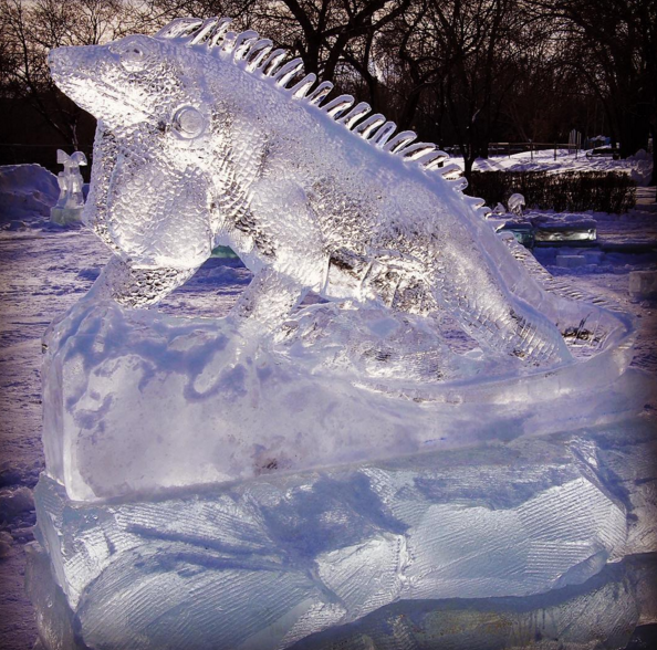 They'll even have iguanas at The Great Ice Show (@thegreaticeshow)